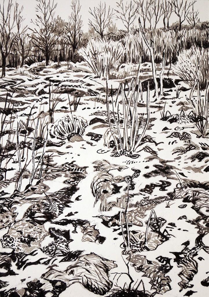 6Wiese mit Schneeresten, 15x10,5cm, 2016