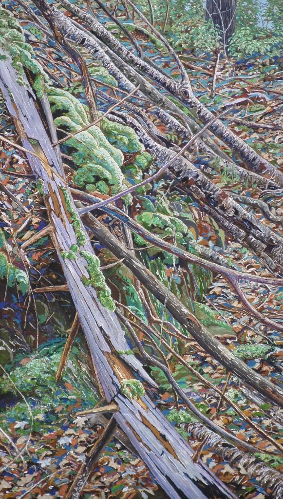 Gestürzte Bäume