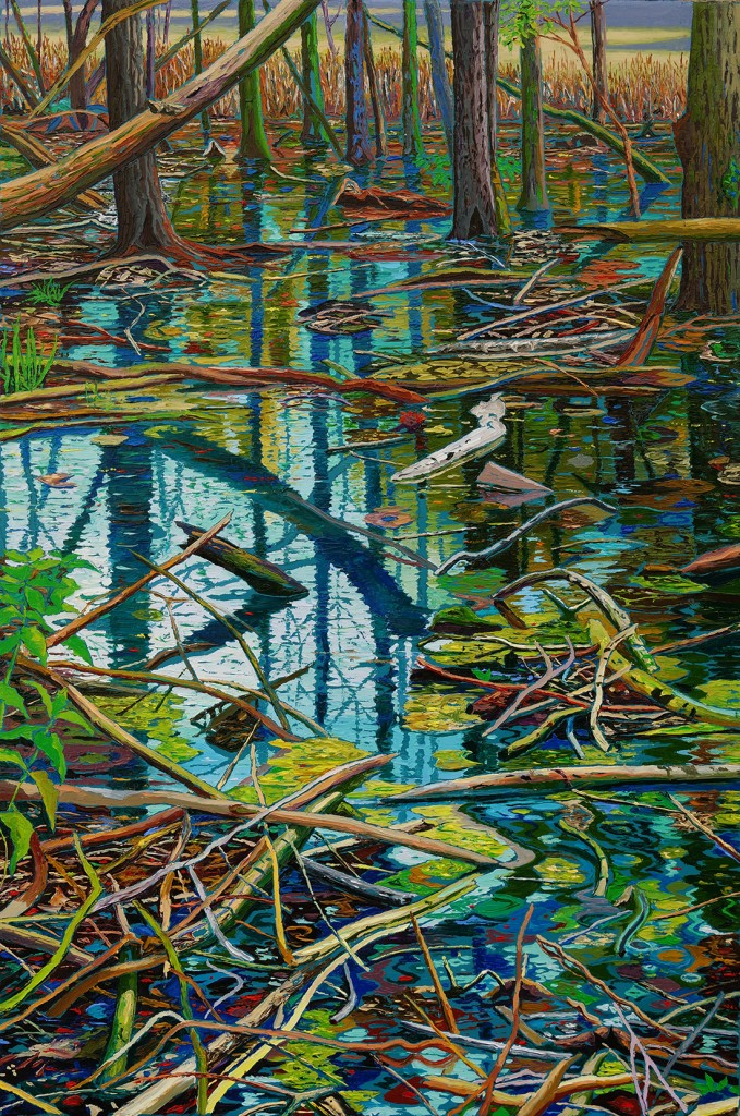 Wasserspiegel im Wald